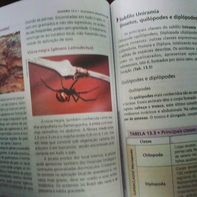 Estudando biologia