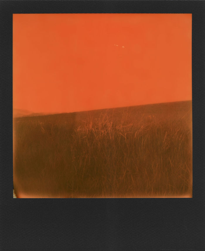 """""""Countryside dyed in orange"""" Tribute to Impossible and all it has done for instant photography. Thankyou. Analogue Analogue Photography Instant Photography Orange Square Analog Analog Photography Beauty In Nature Black Frame Countryside Day Grass Instant Landscape Landscapes Nature No People Outdoors Polaroid Scenics Sx-70 Tranquil Scene"""