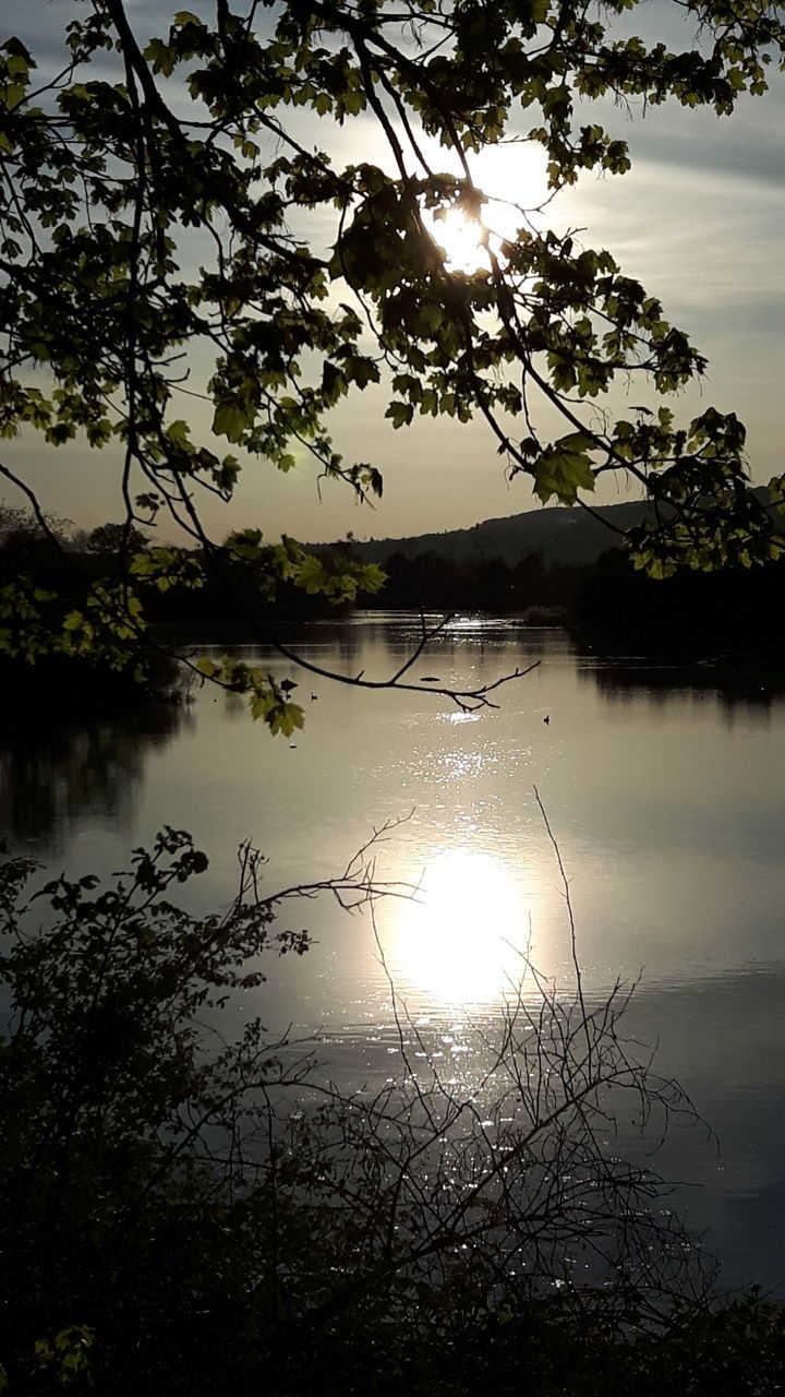 lake, tree, reflection, water, nature, beauty in nature, scenics, sun, tranquil scene, tranquility, sunbeam, sky, sunlight, no people, outdoors, sunset, silhouette, branch, day