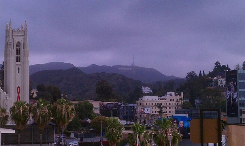 Can You See The Hollywood Sign?