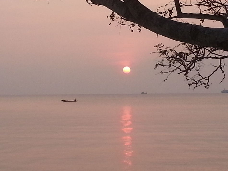 Original Experiences Sunset Boat Branch Pink Sea Sun