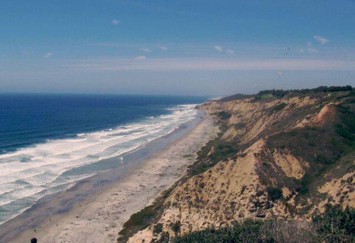 La Jolla California California Nature Ocean Beach