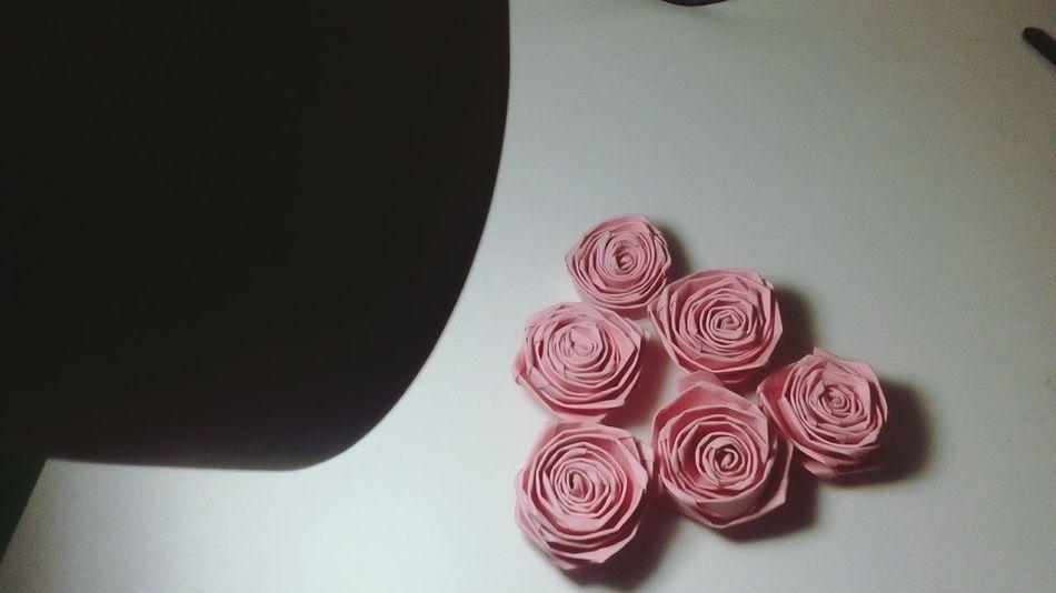Roses 🌹 Roses Pinkroses Handmade Love Beauties Nature Light Pyramid Original PINKY Likeforlike Followforfollow Spamforspam Recentforrecent Flowers Pinkflowers Photography Photooftheday