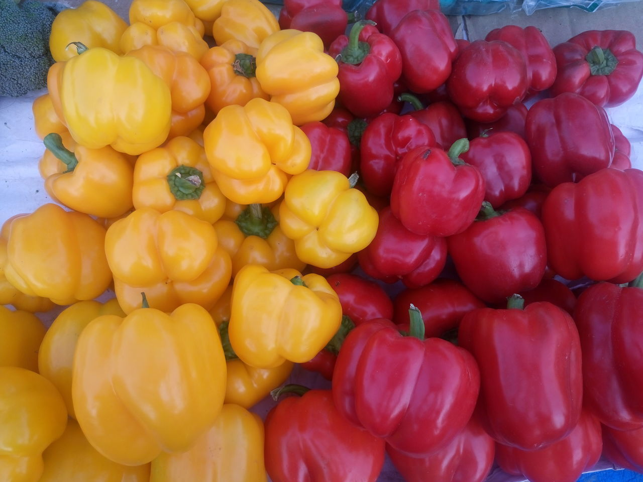 Abundance Backgrounds Bell Pepper Close-up Day Food Food And Drink For Sale Freshness Full Frame Healthy Eating Large Group Of Objects Market Market Stall No People Outdoors Red Bell Pepper Retail  Vegetable Yellow Bell Pepper