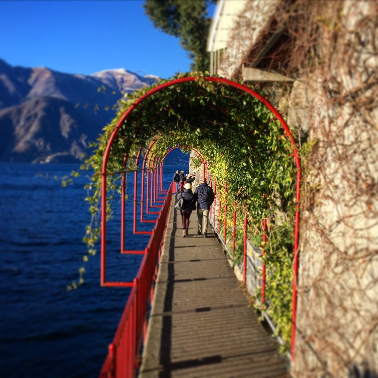 Rear View Real People Walking Nature The Way Forward Day Full Length Landscape Panorama Lakecomo Love Truelove Women Outdoors Built Structure Tree Beauty In Nature Men Architecture Bridge - Man Made Structure Mountain