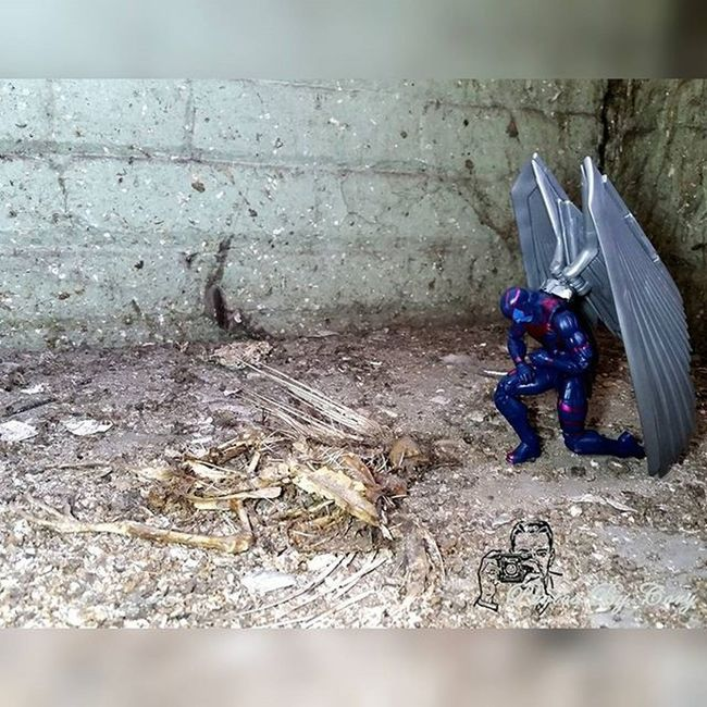 May your new wings carry you farther than these. Sleep well my friend. Marvellegends Arcangel Archangel Death