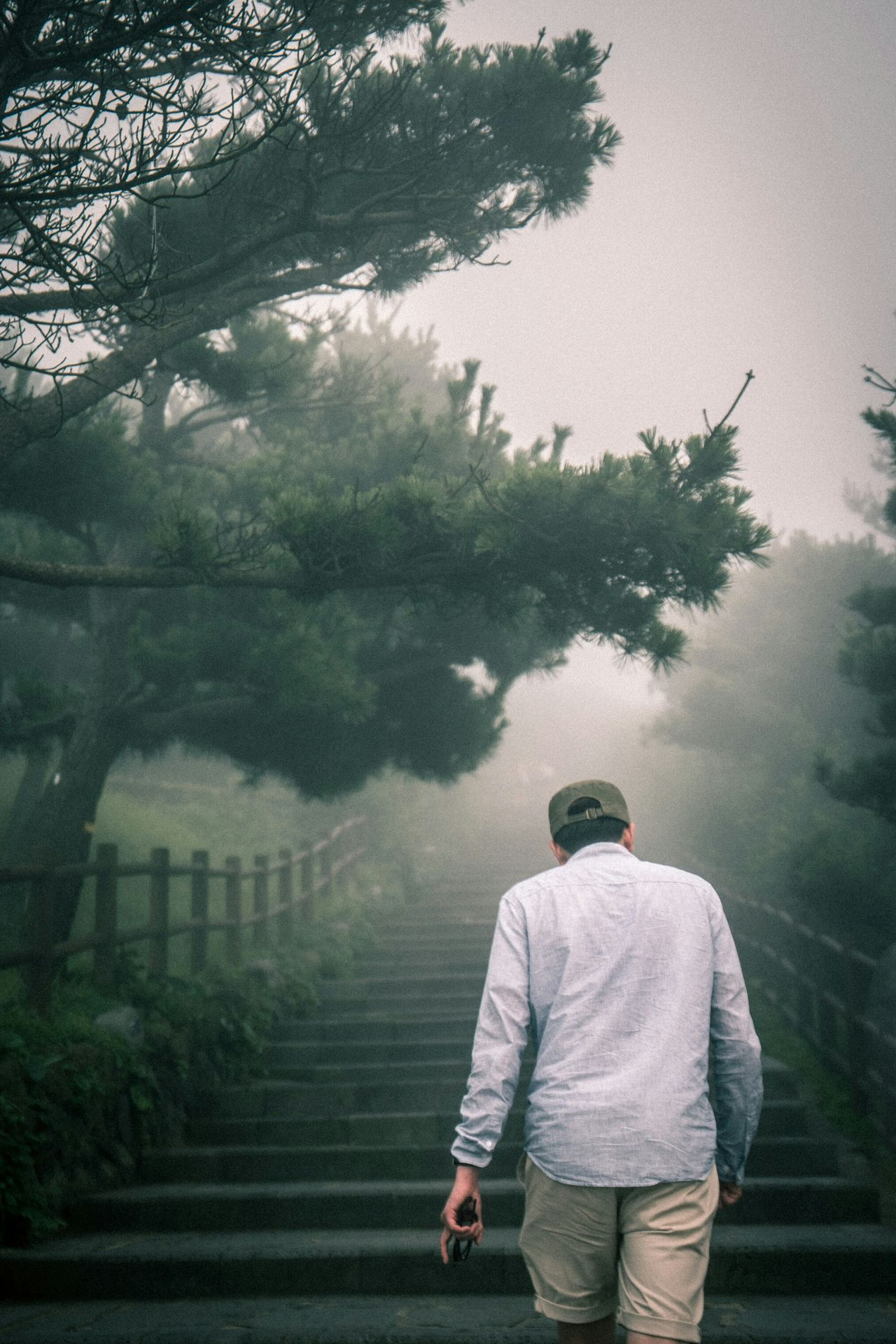 JEJU ISLAND  Foggy Day Mist EyeEm Nature Lover People Scenery Peoplephotography Eye4photography  EyeEm Best Shots EyeEm Korea