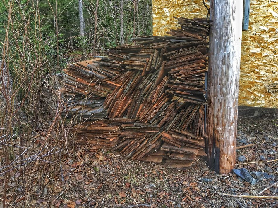 Lumber Industry Wood - Material Stack Deforestation Environmental Issues No People Log Timber Day Field Outdoors Woodpile Tree Trunk Nature Grass Forestry Industry Tree Close-up Used Shingles Cedar Pole Built Structure
