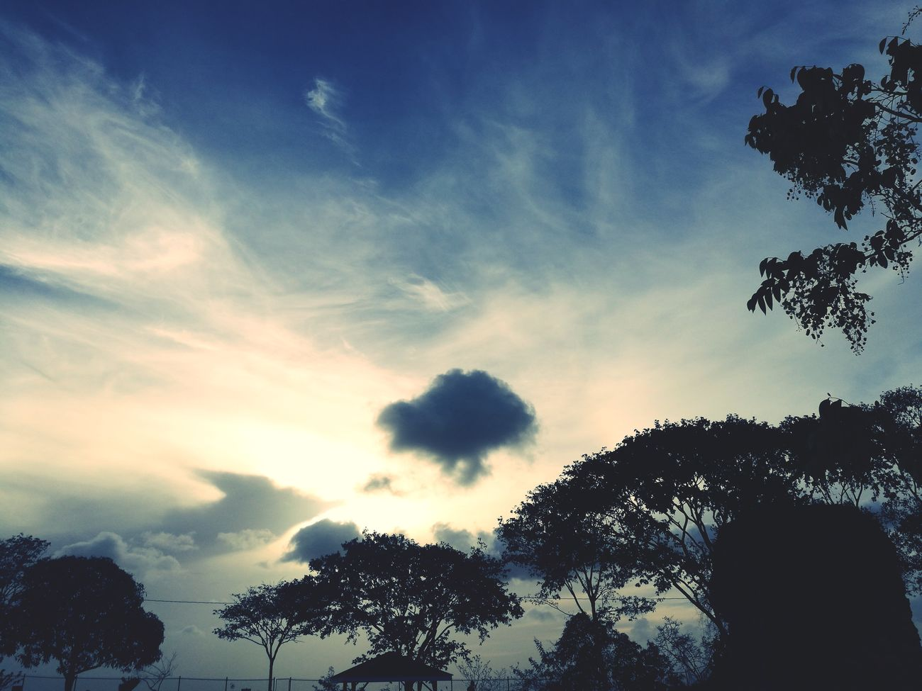 Cloud - Sky Sky Silhouette No People Low Angle View Beauty In Nature