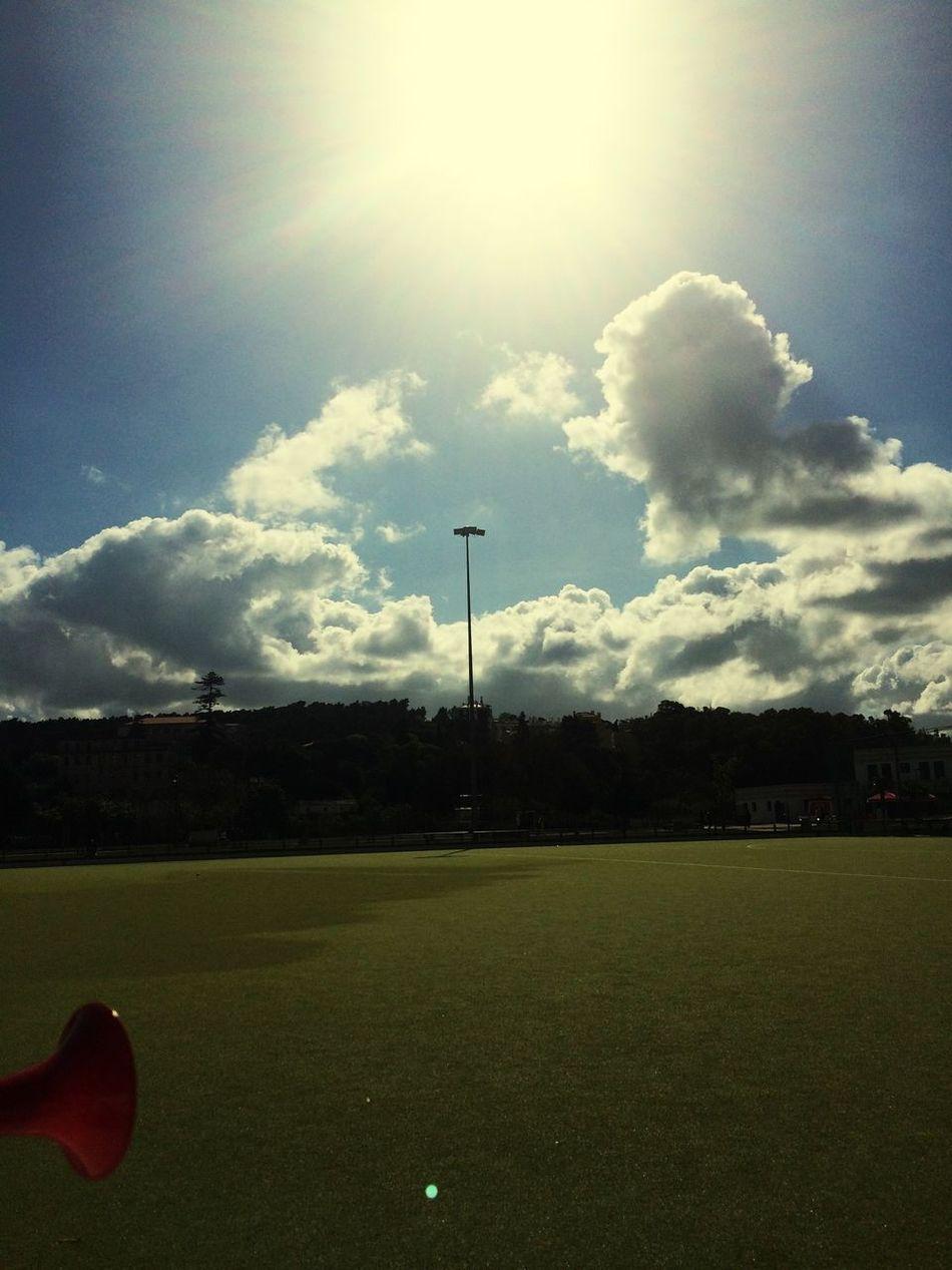 Hockey Enjoying The Sun