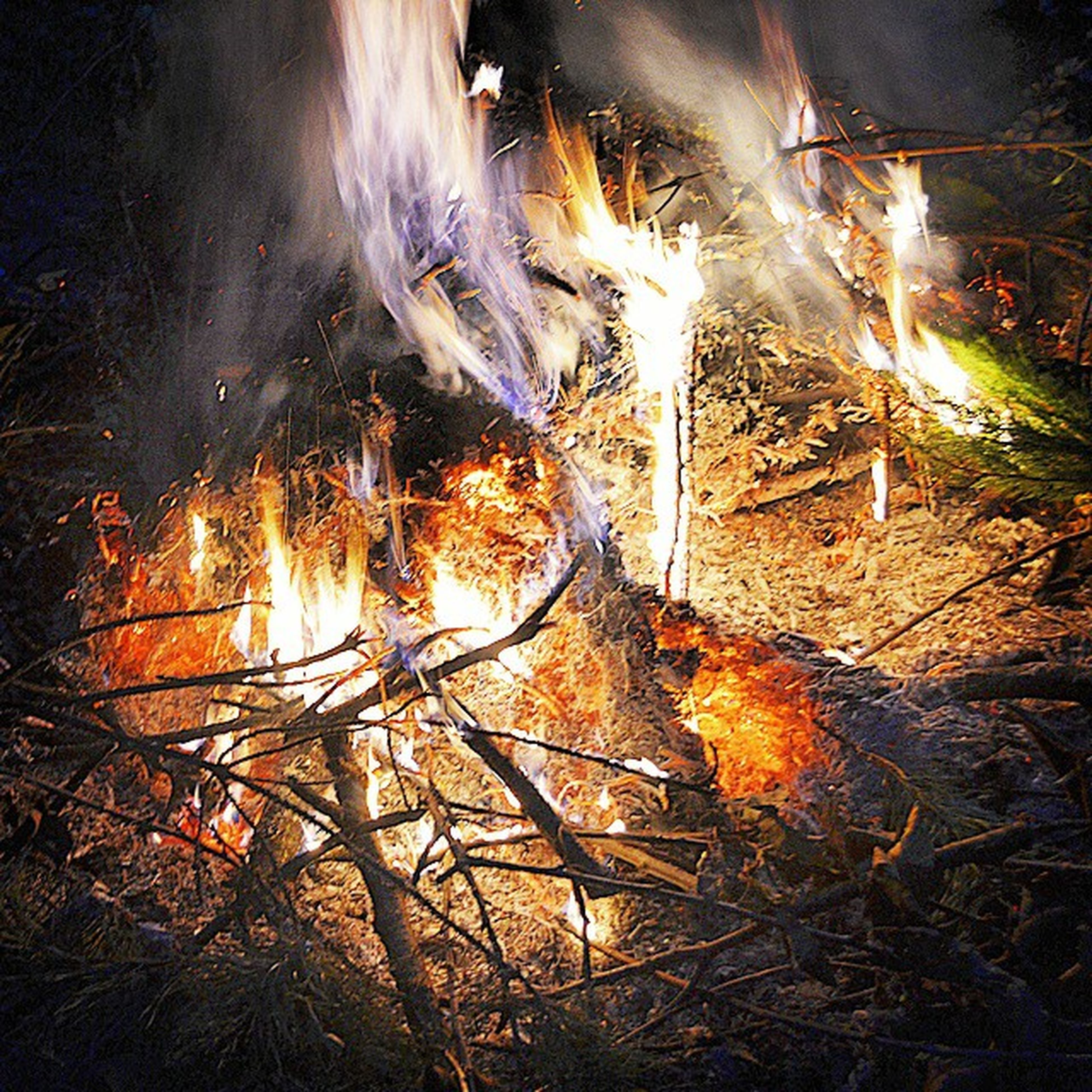 burning, flame, heat - temperature, night, fire - natural phenomenon, glowing, forest, bonfire, nature, sunlight, firewood, water, tree, outdoors, tranquility, no people, log, fire, orange color, reflection