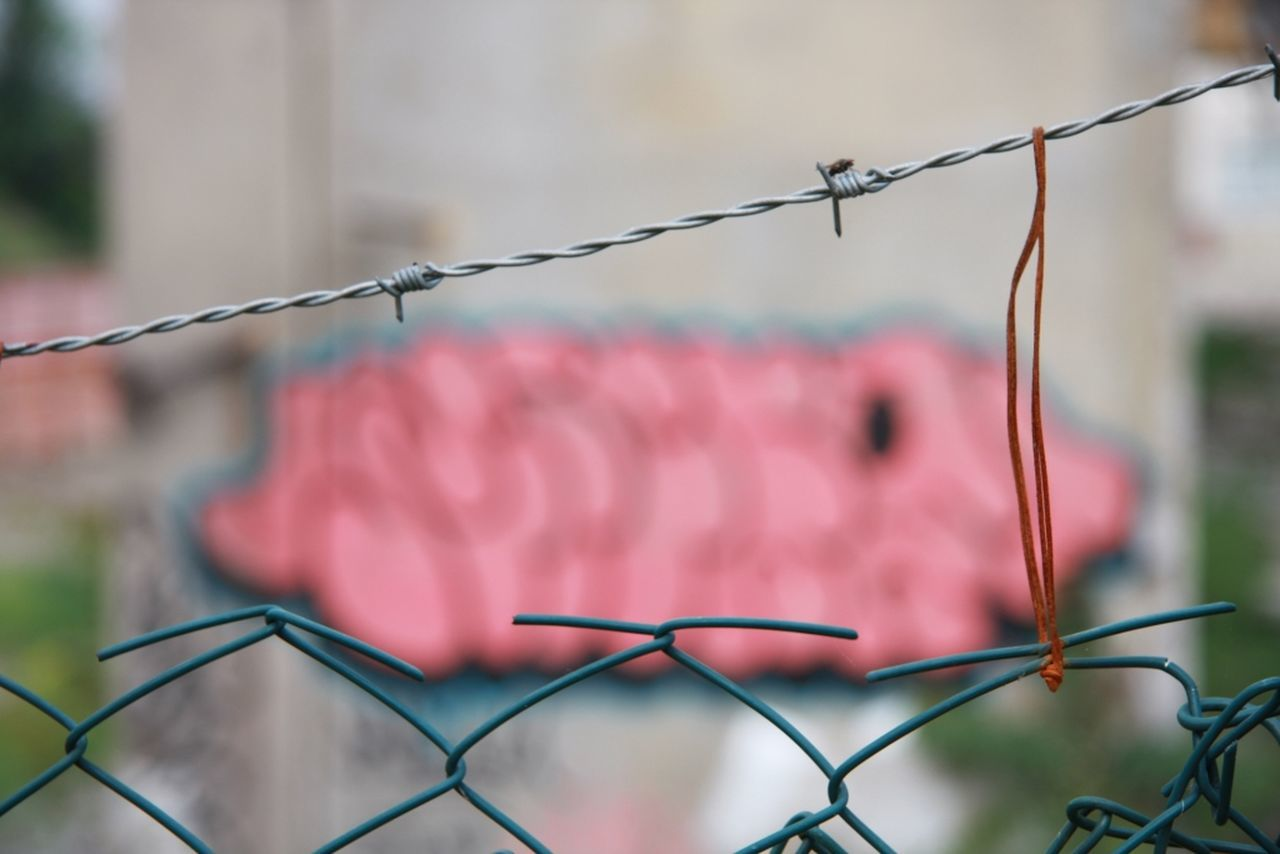 Borders Captivity Close-up Fence Focus On Foreground Graffiti Trapped Wire