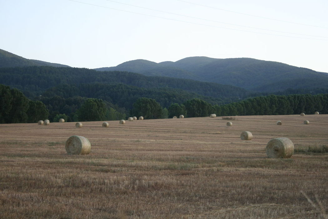Agriculture Bale  Beauty In Nature Clear Sky Crop  Cultivated Land Farm Farmland Field Harvesting Hay Landscape Mountain Mountain Range Nature No People Rural Scene Scenics Sila This Belongs To Me Tranquil Scene Tranquility