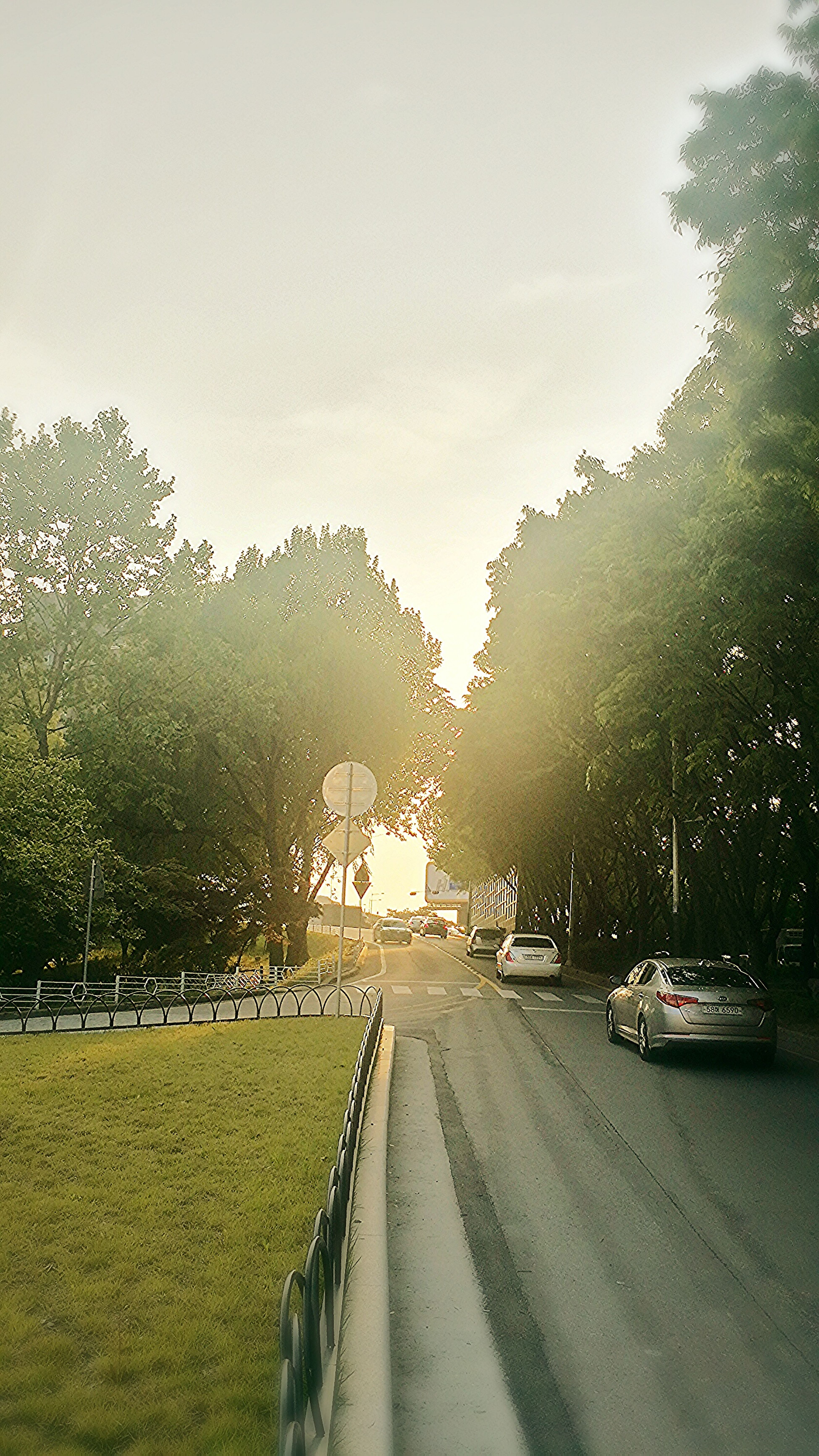 go to home. Urban Nature