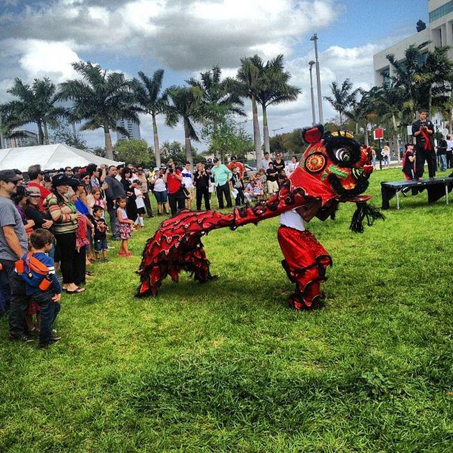 Dragon dance!! Philanthrofest