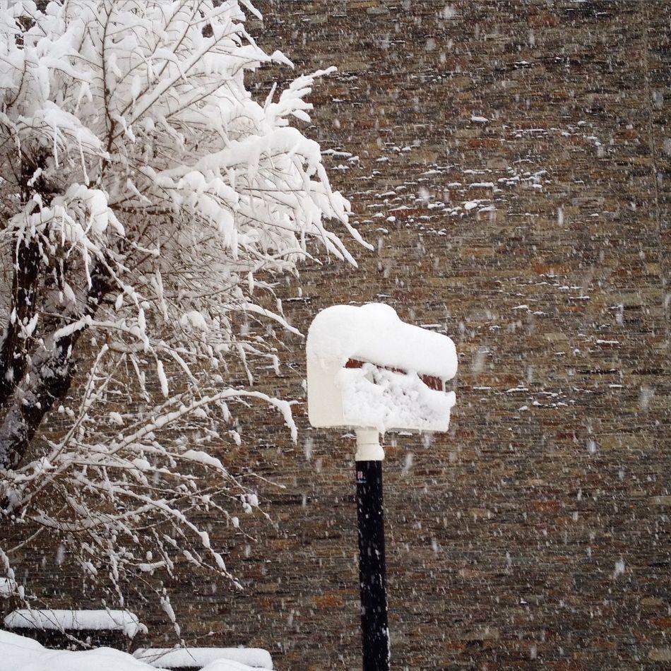Taking Photos Streetphotography Snow ❄ Enjoying Life