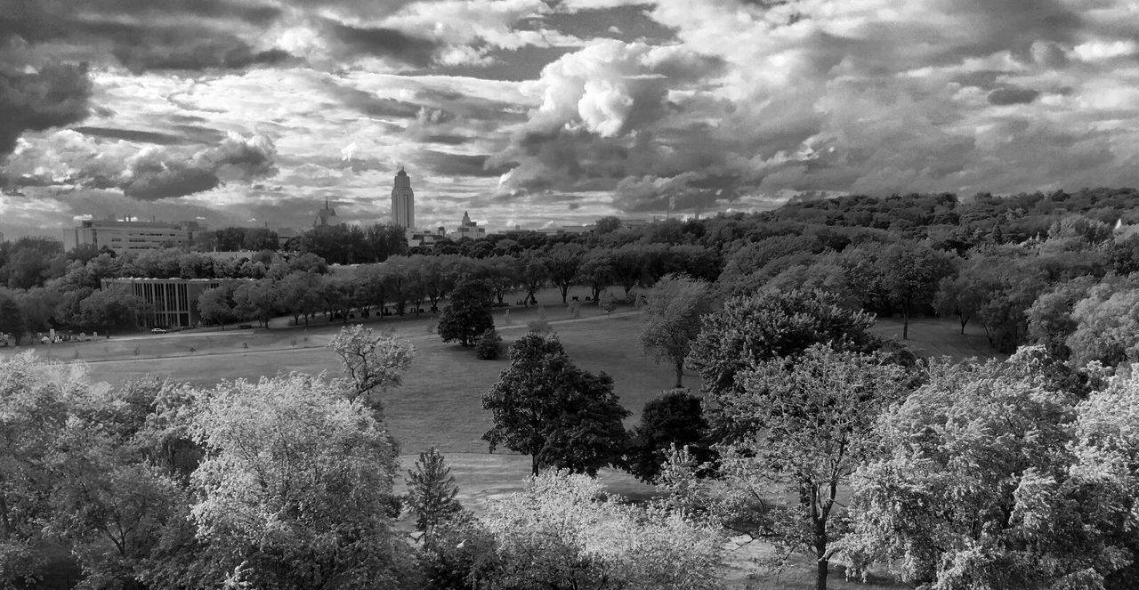 Feel The Journey Montréal VividHDR Black And White Mont Royal Park University Of Montreal