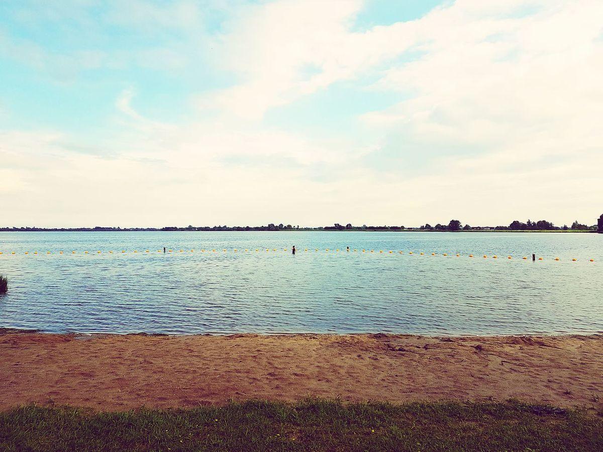 Enjoying The Sunset Swimming Reeuwwijkseplassen Swimsuit Grasshopper