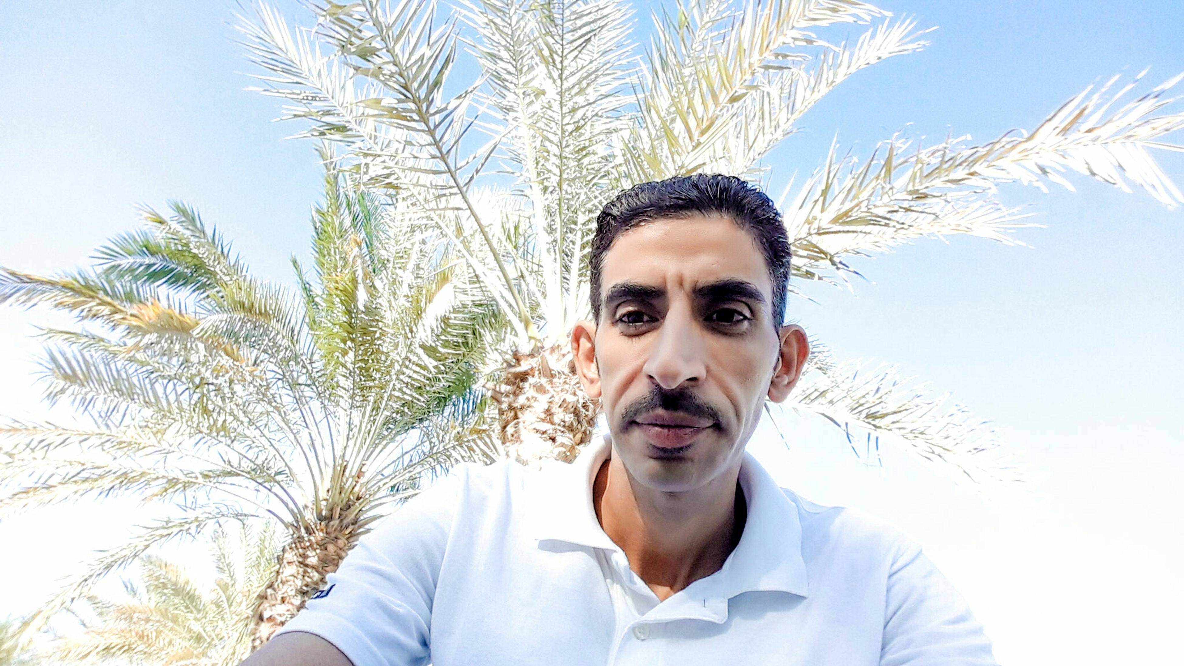 portrait, looking at camera, person, young adult, front view, lifestyles, smiling, young men, headshot, leisure activity, casual clothing, happiness, low angle view, tree, clear sky, mid adult