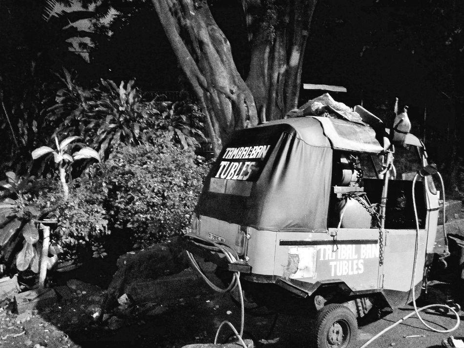 Monochrome Photography Si Bajaj.. Night Tree Plant Tranquility Bajaj Mode Of Transport Transportation Black And White Black And White Photography Black & White Street Photography EyeEmNewHere Adapted To The City