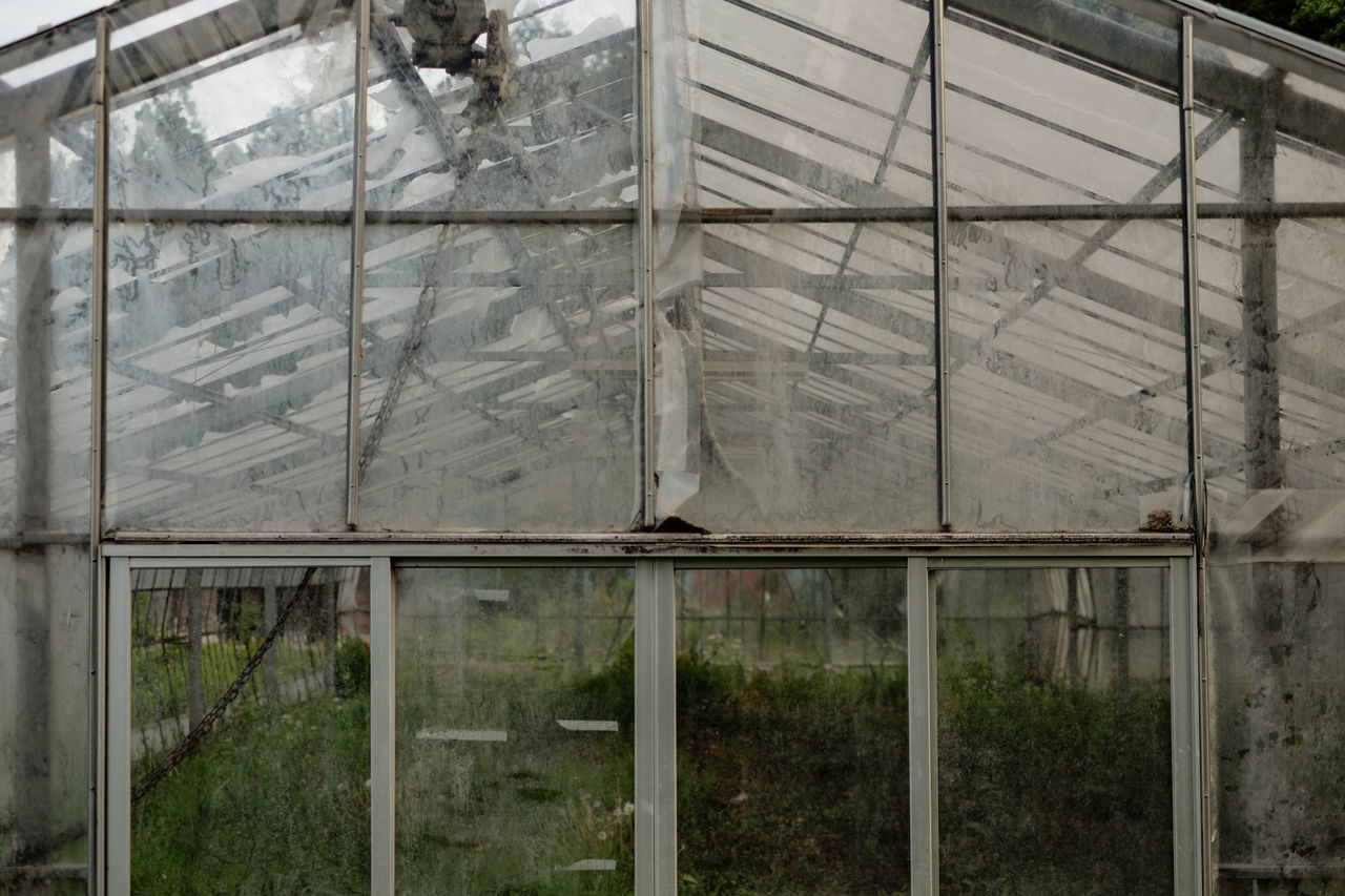 A abandoned greenhouse. Tochigi, Japan. Abandoned Abandoned Buildings Abandoned Places Agriculture Architecture Day Fujifilm Fujifilm_xseries Greenhouse Growth Indoors  Japan No People Plant