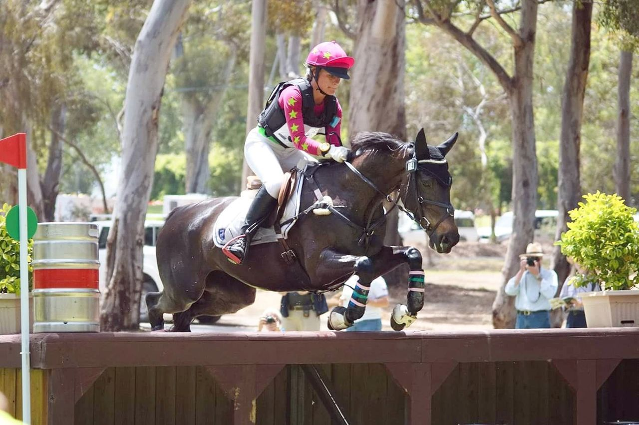 Outdoors Riding Equinephotography Equestrian Life Equestrianphotography Animal Themes Equestrianism Working Animal EventPhotography Eventing Horseback Riding Horse Equine Photography Equestrian Equine Fun City Headwear Motion Competition People Day Adult Adults Only Clown