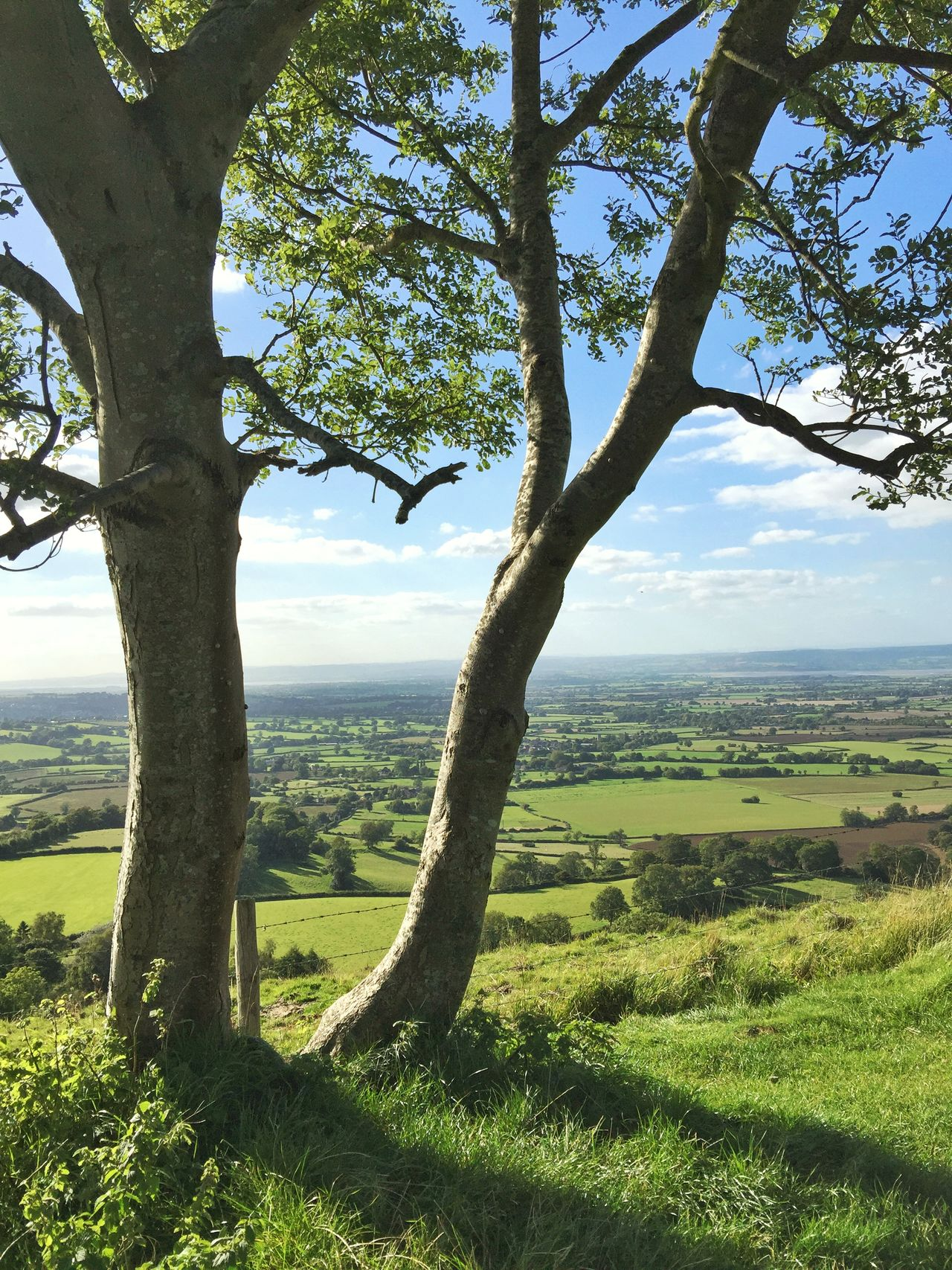 Coaley Peak viewpoint Gloucestershire Cotswolds Cotswold Way From My Point Of View September Throughthetrees Fabulous View