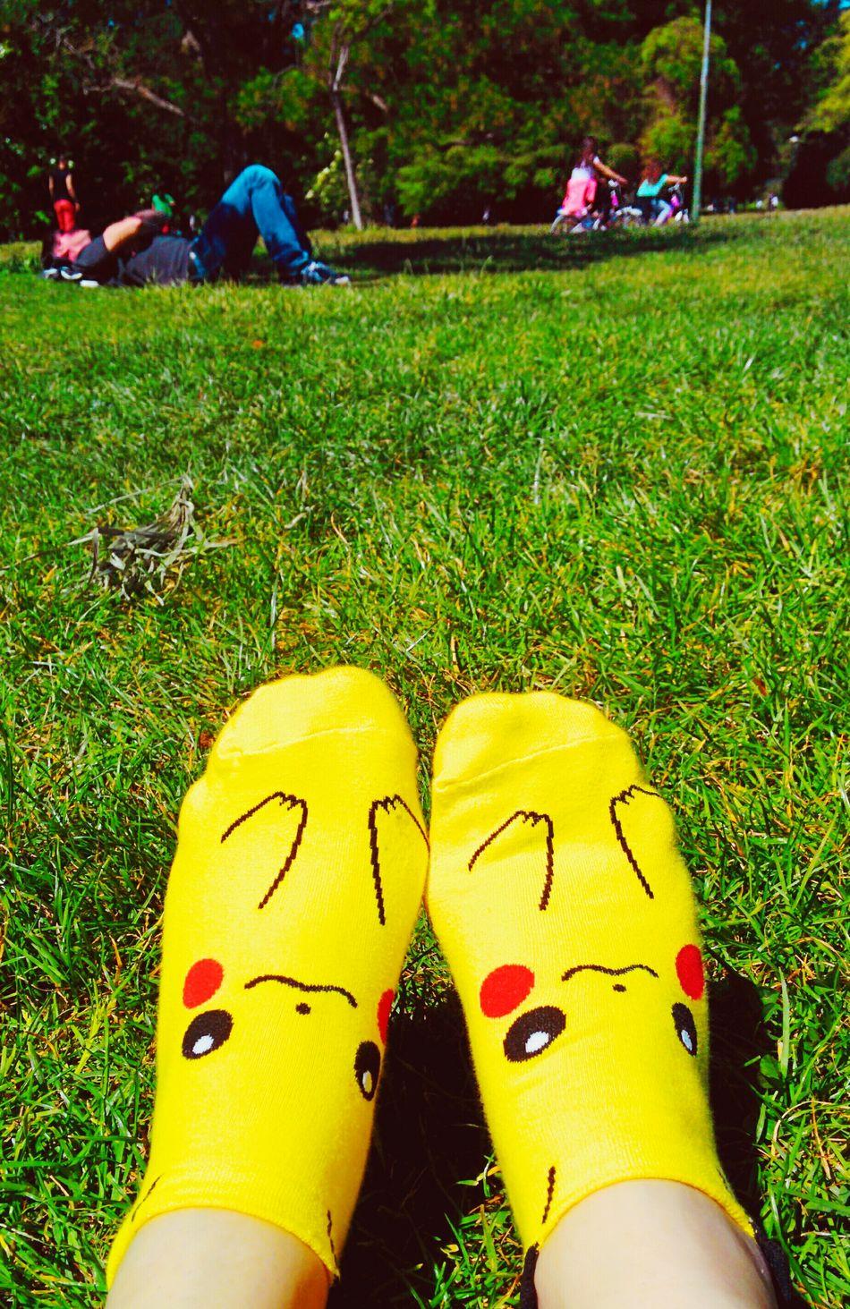 Pokemon. Wellow Sun Hello World