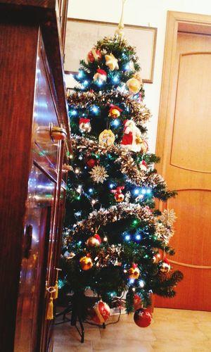 Ancora alberi di Natale Christmas Tree Christmas Taking Photos Happiness <3