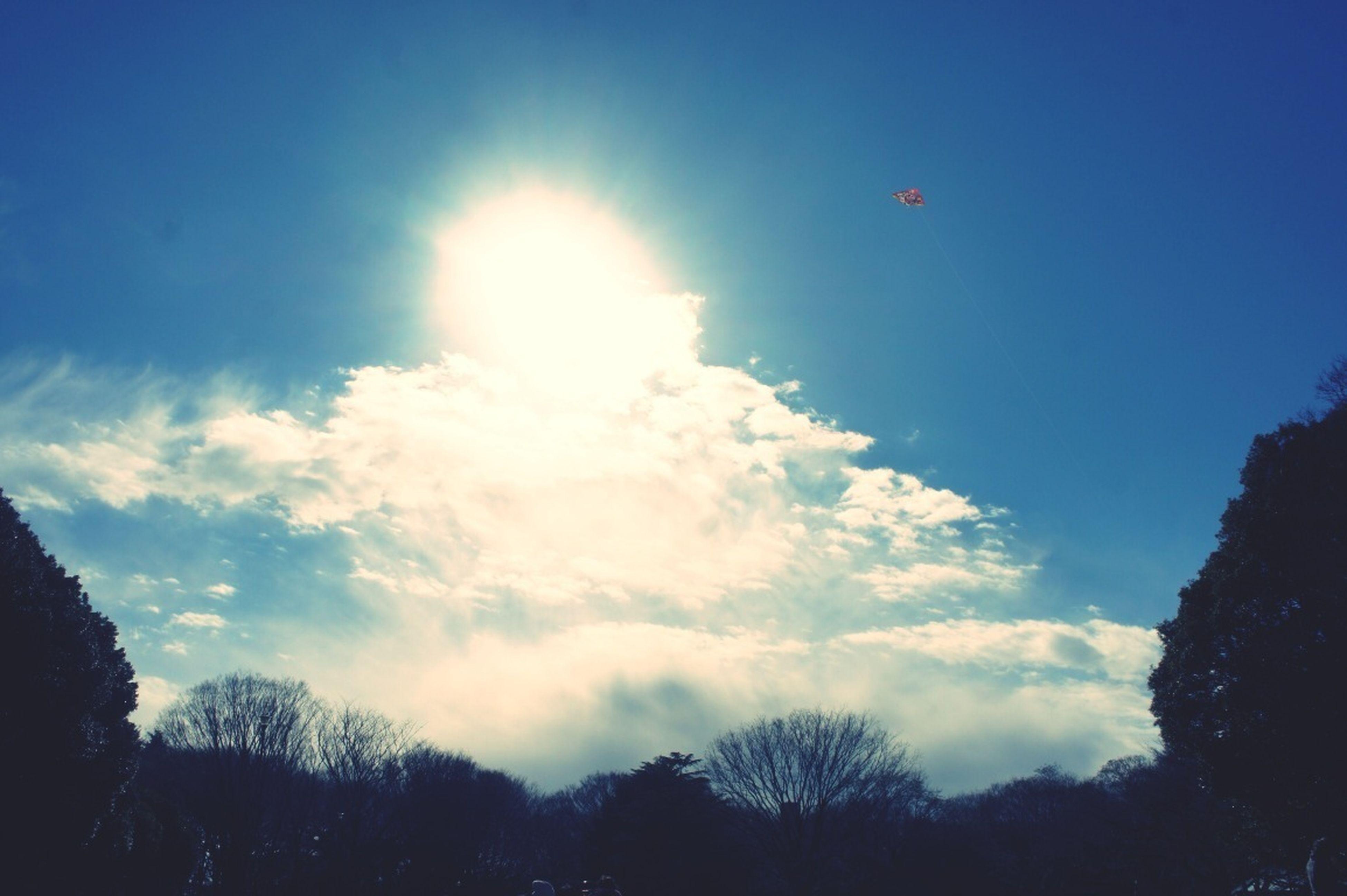 Overloaded Sky
