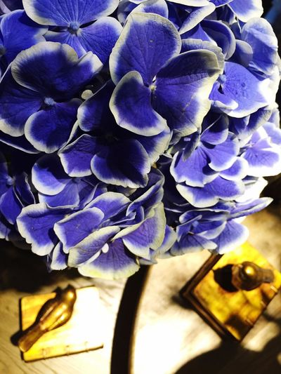 Beautiful~😄 Coffee Shop Cafe Flowers Relaxing