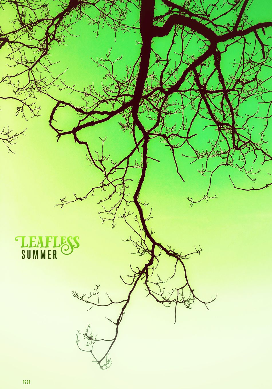 Leafless Summer. P224 Onephotoaday IPhoneography 365project2016 Nature Low Angle View Typography Phonto Green Fresh Summer Leafless Leafless Tree Clear Sky Branch Outdoors