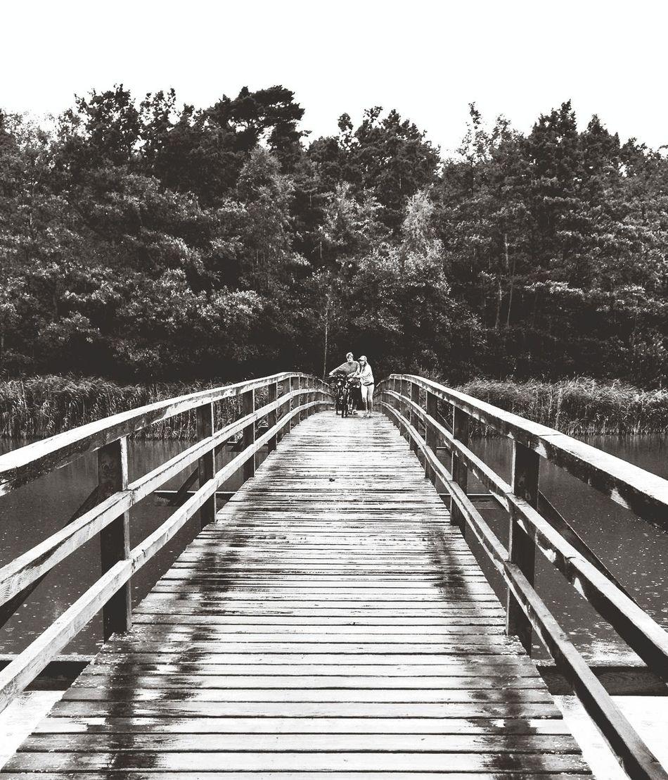 Capa Filter Bridge Blackandwhite