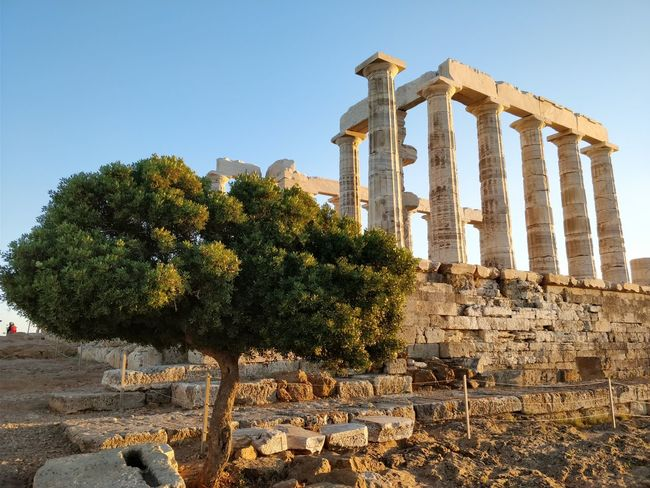Sunset in Sounio Oneplus Sunset Greece Ancient Low Angle View Sounio Architectural Column Travel Destinations History Tourism Tree Architecture Built Structure Outdoors Travel Old Ruin Ancient Civilization Day Sky No People