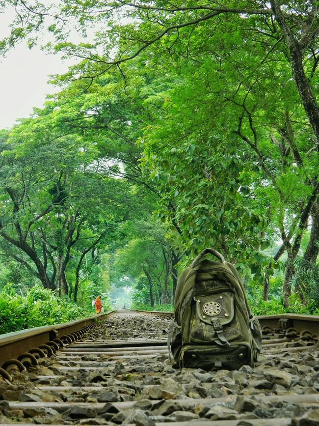 Getting Creative Railway Tracks Freedom Living Bold Greenery Looking Forward Landscape Untold Stories Rows Of Things Deceptively Simple Going The Distance The Places I've Been Today Capture The Moment Notes From The Underground Urban Gardening Everybodystreet Minimalism Minimalobsession Pastel Snapshots Of Life Feel The Journey GetYourGuide Cityscapes Me, My Camera And I in Jessore, Bangladesh