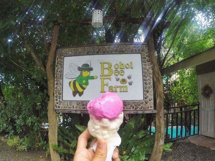 Dragon Fruit Ice Cream! One Person Holding Real People Frozen Food People Outdoors Day Icecream