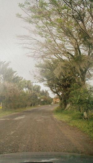 Taking Photos Santacatarina  Brazil Drive