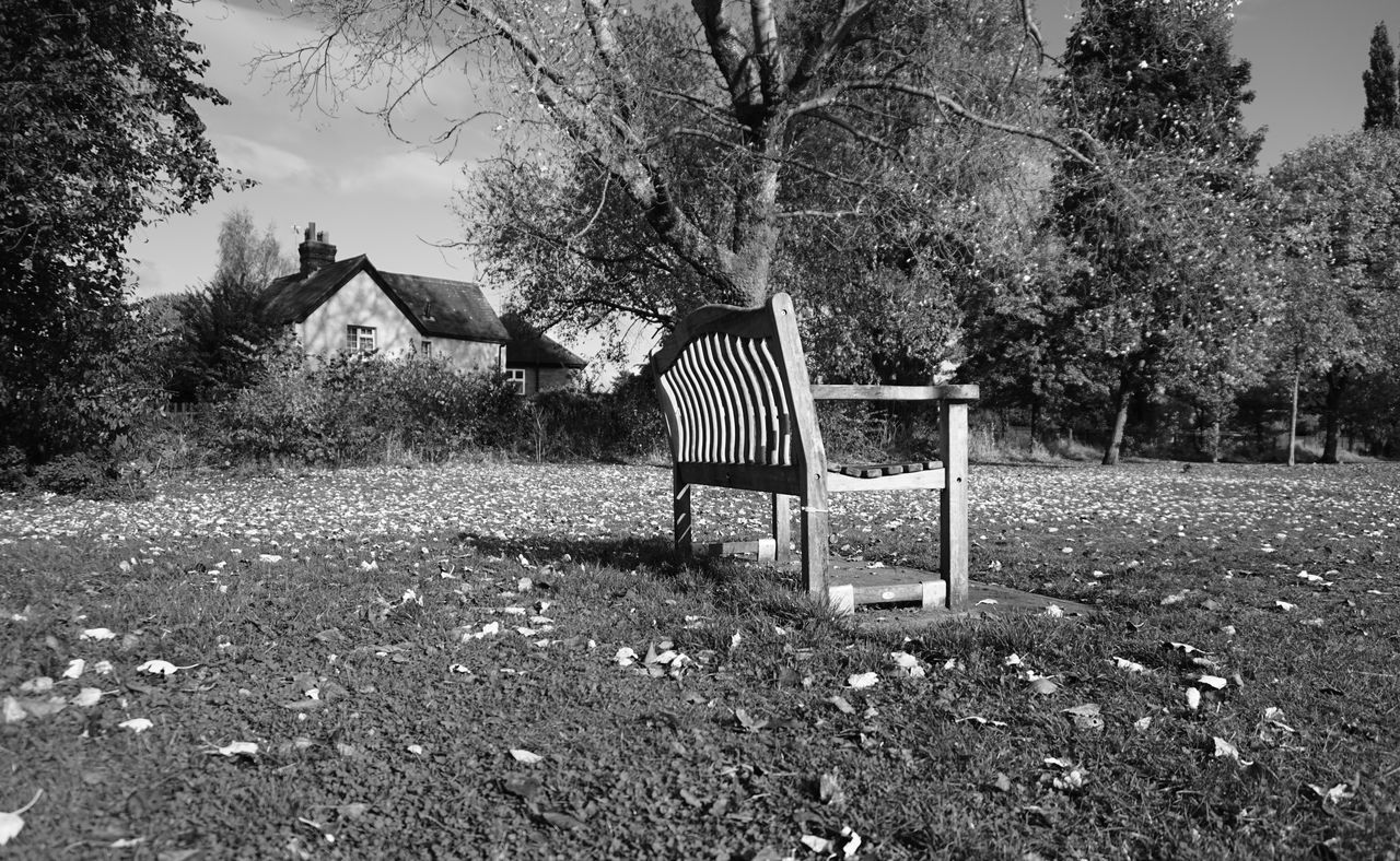 Falling Chair Tree Absence Sunlight Nature Day Outdoors No People Tranquility Beauty In Nature Sky Nantwich Monochrome Photography Monochrome Cheshire Uk England Sony A5000 Autumn🍁🍁🍁 Autumn Leaves Fall Blackandwhite Photography Blackandwhite