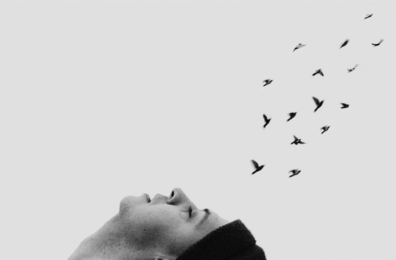 Dreaming of distant birds Bird Flock Of Birds Large Group Of Animals Flying Human Body Part Headshot Close-up Conceptual Getting Creative Getting Inspired Blackandwhite Monochrome Long Goodbye TCPM Cut And Paste The Portraitist - 2017 EyeEm Awards