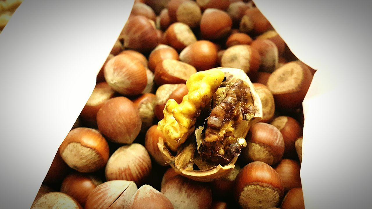 Hazelnut Nut Differences  Speacialedition Speacialeffects Rare View Rare Photography Rarely