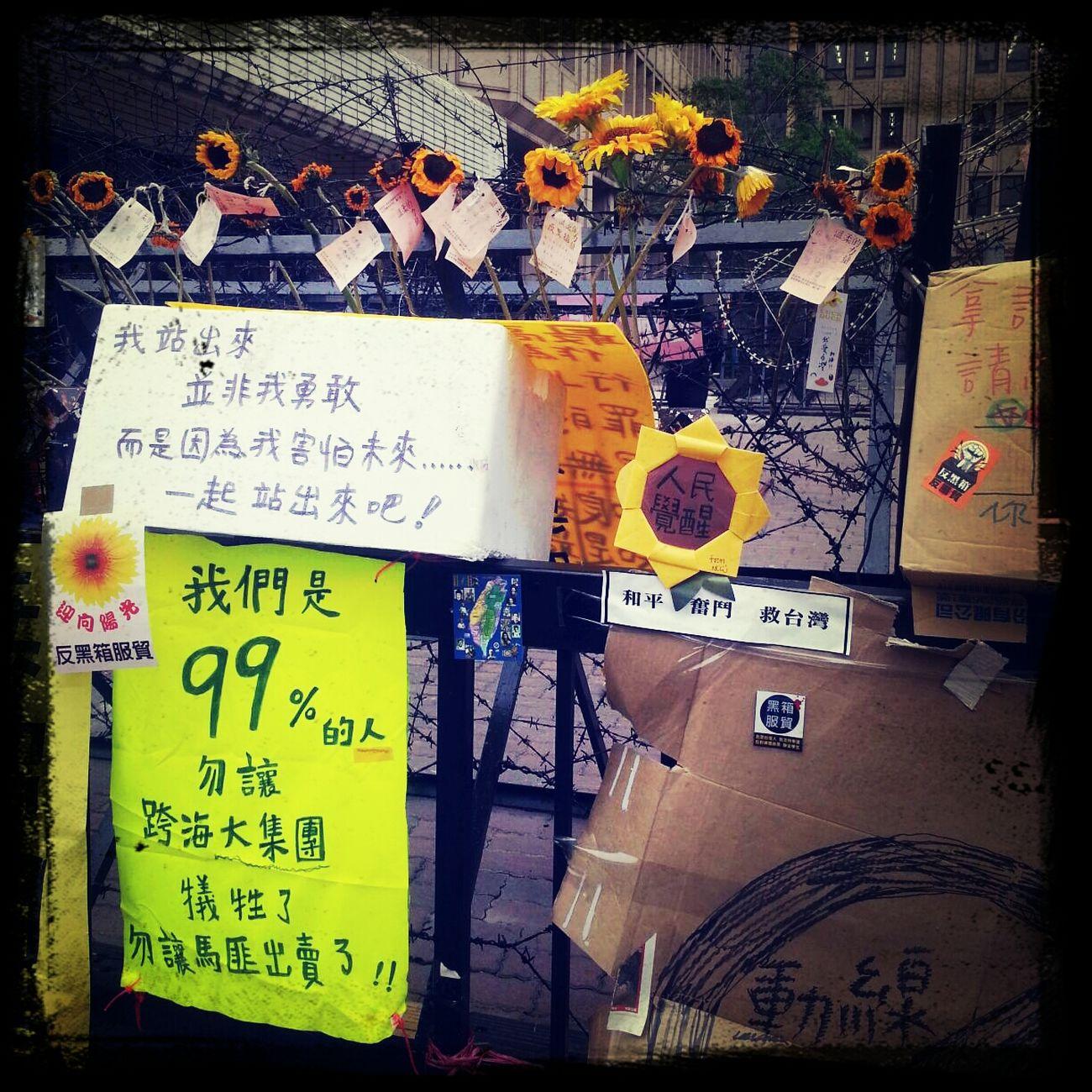 Sunflower movement in Taiwan First Eyeem Photo Sunflowermovement