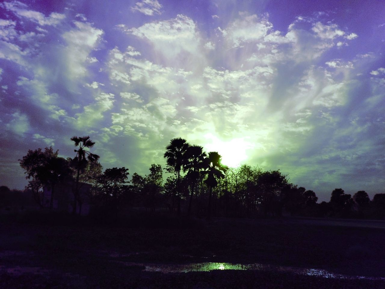 Sunset photography naturelove Landscape Outdoors Beauty In Nature No People Space Palm Tree Sunbeam