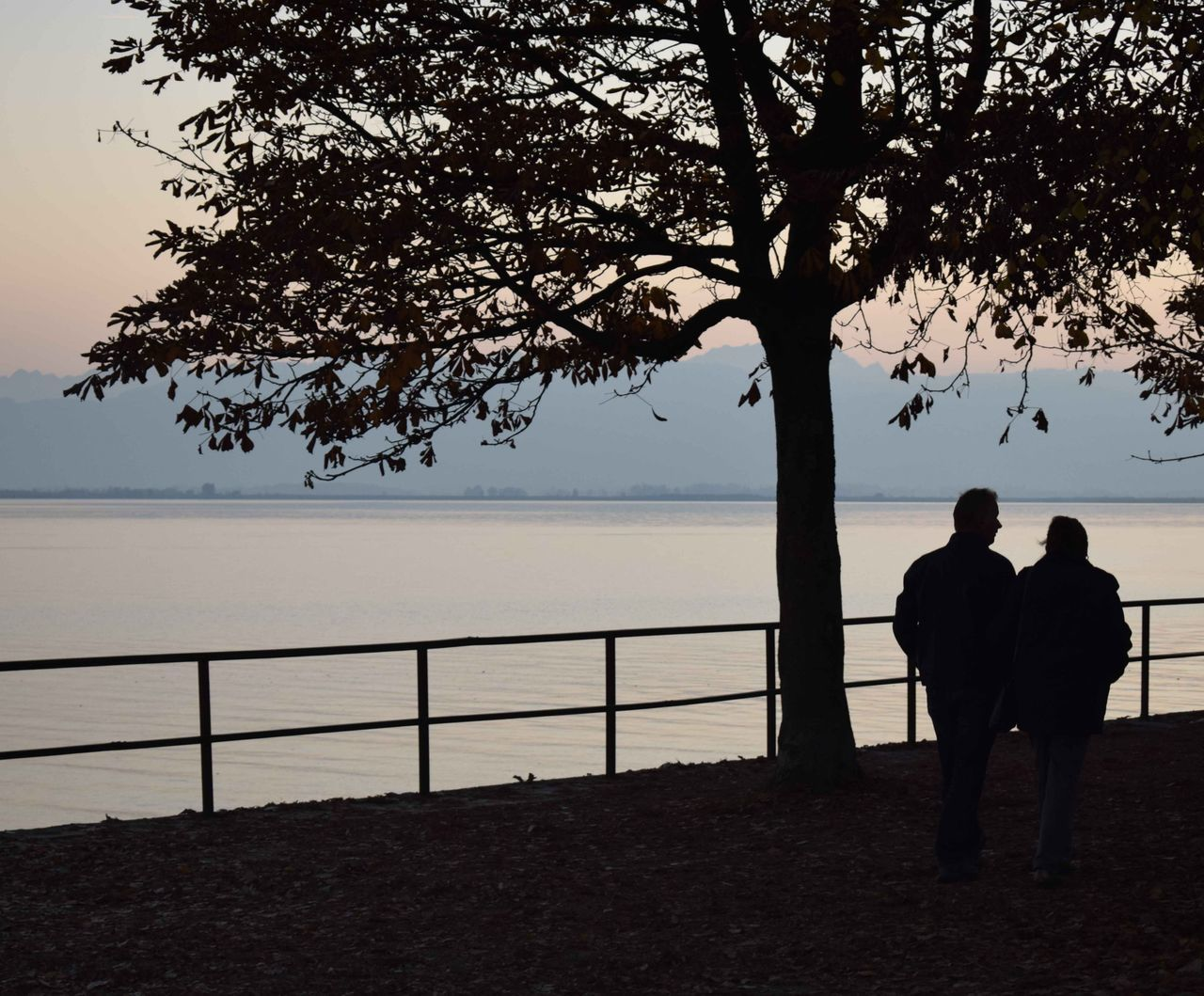 Romantic Sunset Tree Romantic Sky Outdoors People Sea Nature Horizon Over Water Lindau Island Lindau Bodensee Reflection Lindau Hafen Reflection_collection Beauty In Nature Love♡ Love Is In The Air Lindau Unknown People Mynikon