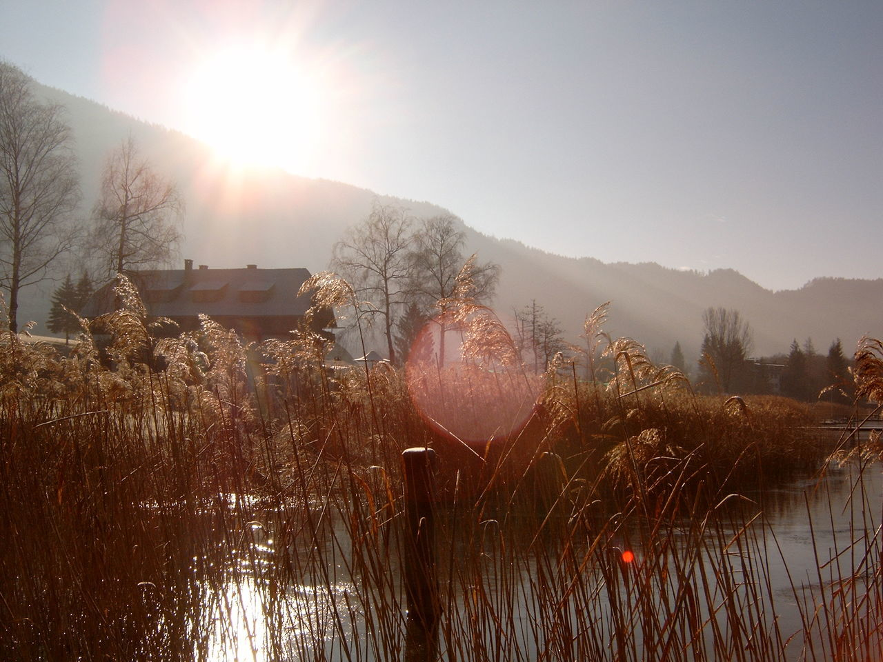 Austria Cold Temperature House Kärnten Lake View Lakeside Lakesideview Landscape Lens Flare Light Ossiacher See Outdoors Scenics Sun Sunbeam Sunset Tranquil Scene Tranquility Winter