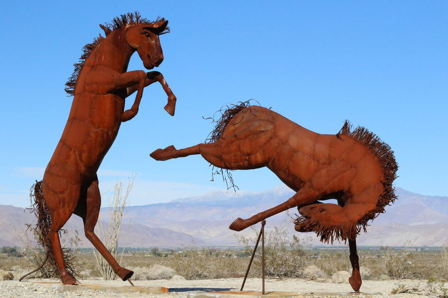 Animal Arid Climate California Clear Sky Desert Beauty Deserts Around The World Horse Horse Photography  Mammal National Park No People Outdoors Sculpture