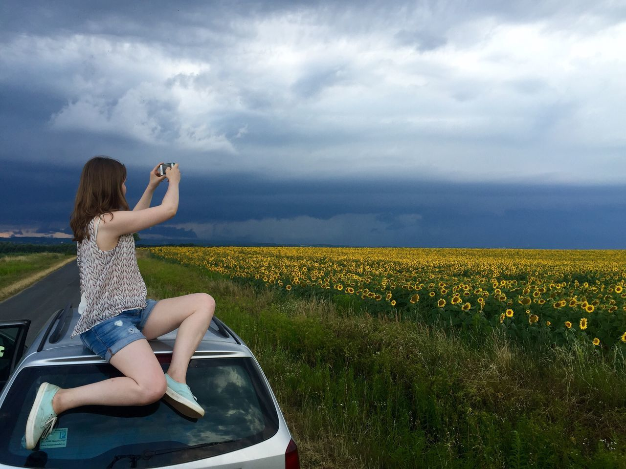 Beautiful stock photos of sunflower, 18-19 Years, Agriculture, Beauty In Nature, Car