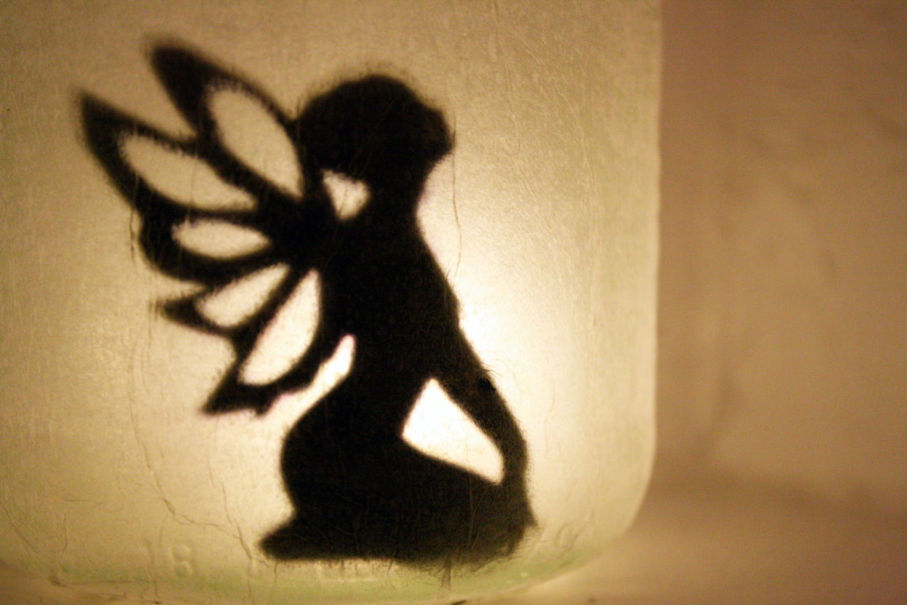 ´Captured` Captured Close-up Day Elf Fantasy Focus On Shadow Glass Indoors  Light And Shadow One Person People Shadow Light