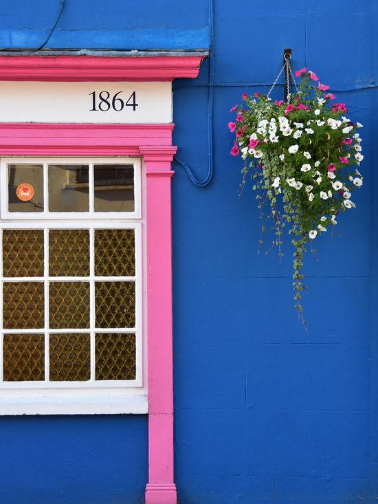 Kinsale 1864 1864 Barry Murphy Blue Building Cork Ireland Kinsale Pink Hanging Basket Shopfront