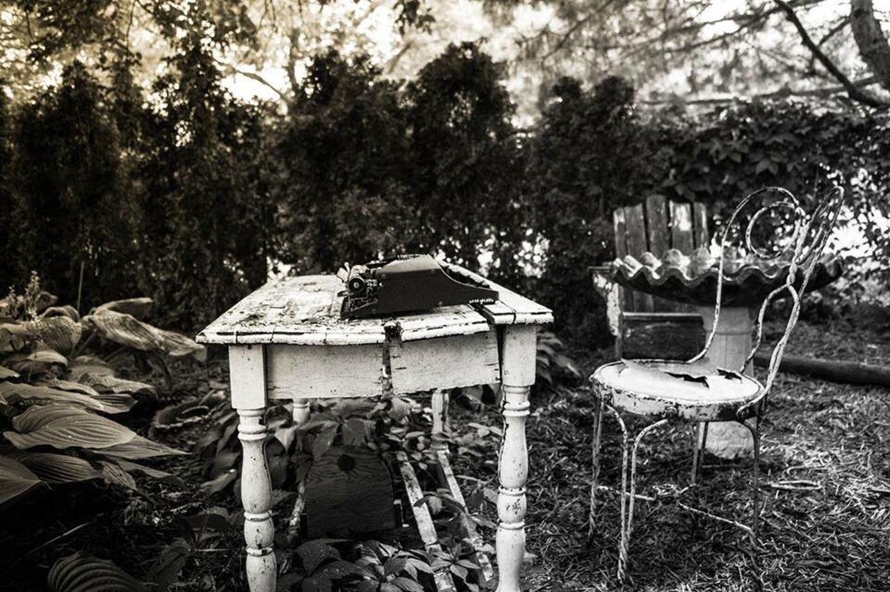 Steampunk Typewriter Garden Antique