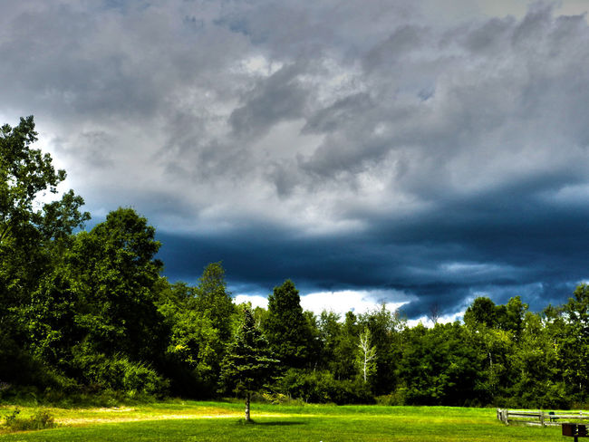 Stormy Park Cloud - Sky Grass Green Green Color Landscape No People Outdoors Overcast Storm Tree Weather